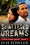 Shattered Dreams WEBSITE USE